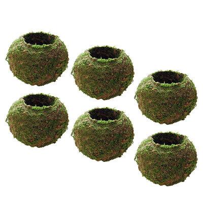 6xMoss Woven Ball Shaped Flower Plant Pot Succulent Planter Basket Green 9cm