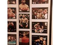 Mike tyson boxing pictures,