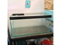 98 litres fish tank/tank only/ water tight ready to use