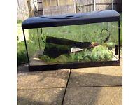 Aquarium Diversa 60x30x36 cm Rectangular