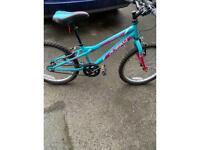 "Girls bike 6-9 yrs 16""wheels"