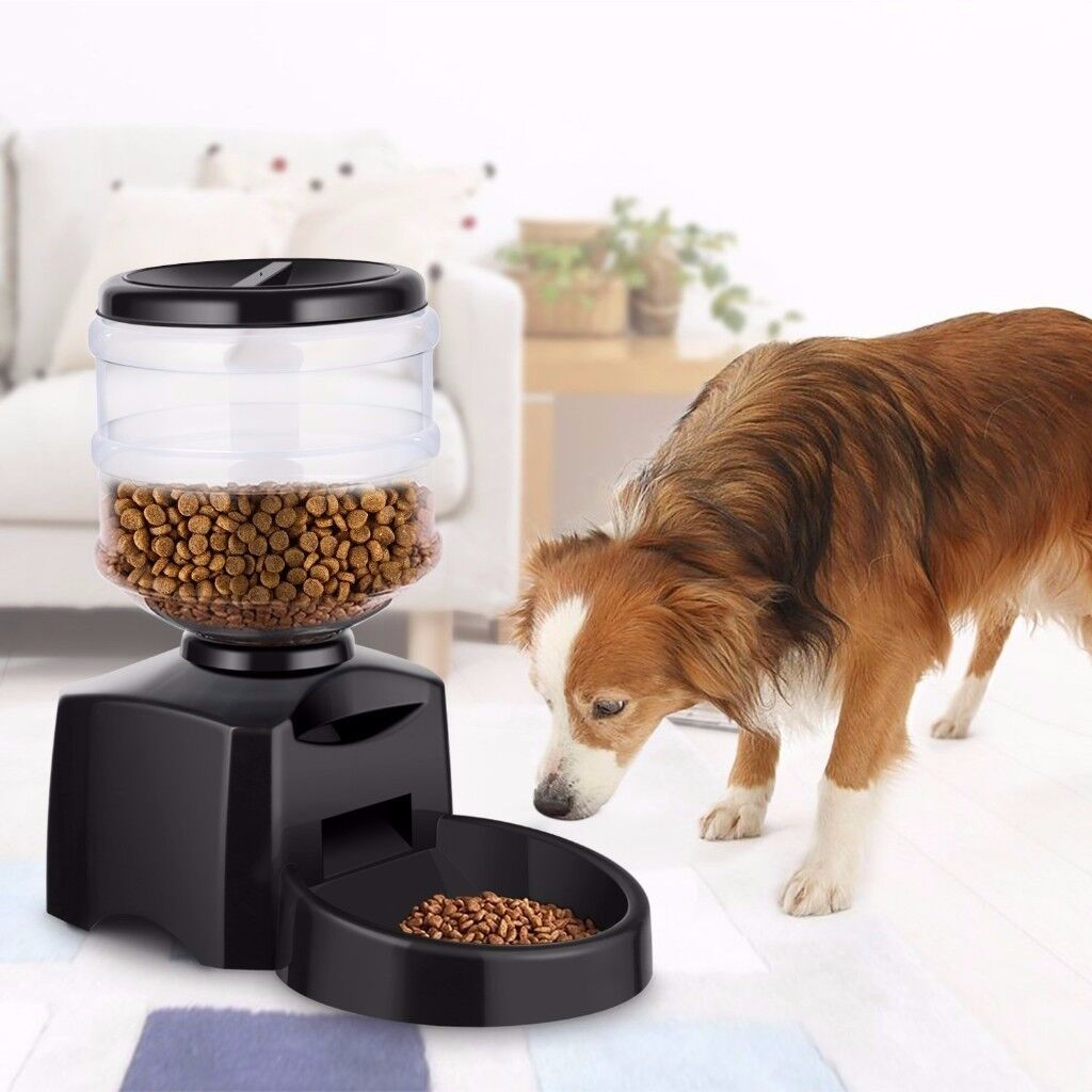 Automatic Pet Feeder Electric Dog Dry Food Dispenser Bowl With Digital Display - 5.5L
