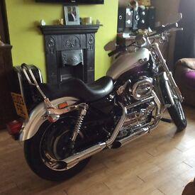 Harley Davidson XL Custom 1200. Mint condition.