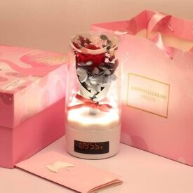 LED Enchanted Rose Light With Clock, Beauty & the Beast Preserved0 Rose with LED Light Fallen Petals