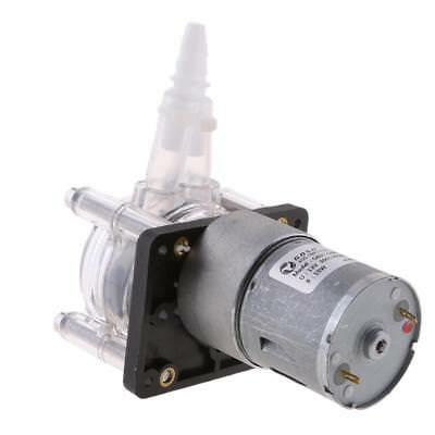 12v Peristaltic Pump Dosing Pump Anti-corrosion Strong Suction Pump