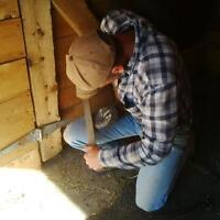 farrier taking on new clients!