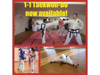 1-1 Martial Arts Training