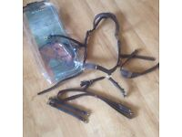 Genuine Rambo micklem multi bridle, small horse/cob. Havanna BARGAIN PRICE TO SELL. CAN POST.