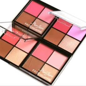 4 in 1 Blusher Palette