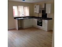 1 bed flats to rent