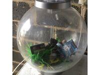 Bi-orb fish tank plus accessories / heater