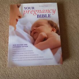 Your Pregnancy Bible Book