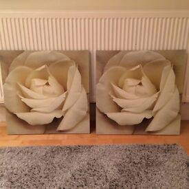 Two Ikea White Rose Canvas Prints