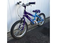 Raleigh childs mountain bike NEW