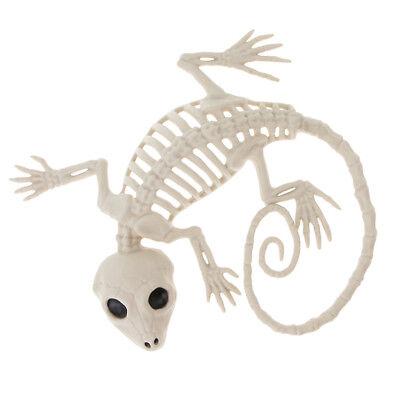 kelett Dekor Tiergecko Skelett Spukhaus Requisiten (Halloween Requisiten Dekor)