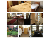 twin roo, large twin room, luxury and clean accommodation, family house, all bills included