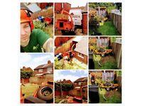 Tree surgeon, Tree care, Arborist, Wood chipper, Stump grinder etc...