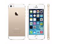 *Factory Unlocked - Good* iPhone 5S Gold 16GB LTE/4G Retina Latest iOS 11