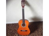 Elevation Accoustic guitar