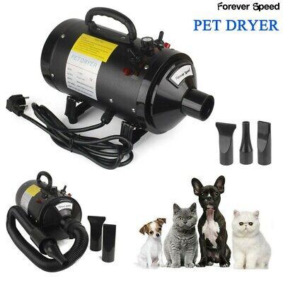2400W Mascotas Pelo Secador Perro Gato Higiene Ajustable Soplador Blaster Heater