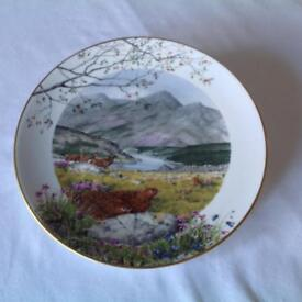 Collectable Plate
