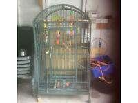 Large full size parrot cage