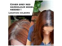 Looking for women's with a lot of natural grey hair to colour hair red tone(dark red,mahogany etc) !