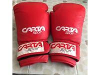Carta sport boxing gloves