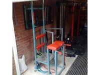 Hyper Extension, Romanian Chair, Reverse Hyper