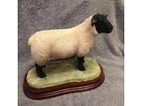 Border fine arts Suffolk Tup