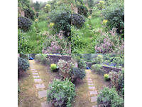 Tony's Garden and House Services London and Kent