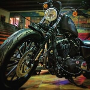 2014 harley-davidson XL883N Sportster Iron 883 BLACKED OUT BRUIS