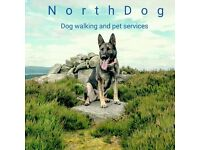 NorthDog - Dog walking and pet services