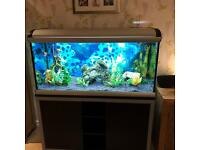 Ferplast Star 120 Aquarium and Cabinet - worth £1800