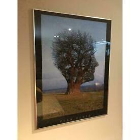 90s Vntage Pink Floyd Picture Framed