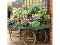 Horticulture Staff needed for Petersham Nurseries Covent Garden