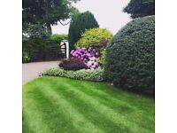 Garden Maintenance and landscape Services - Milton Keynes