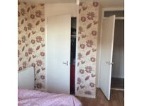 A spacious room in two bedroom flat for rent