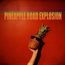 Drummer wanted for busking / street / concerts - Pineapple road explosion - Disco funk rock