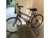 Mountain bike practically new never used no damage open to offers NEED GONE ASAP