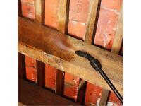 Rising damp / DPC / Woodworm