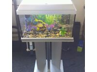 Elite Silver 40 Litre Fish Tank with stand and heater £9