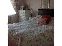 Full length bedroom curtain and bedding