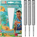Legends Darts Wayne Mardle Hawaii 501 90% 20-22-24-26 Gram