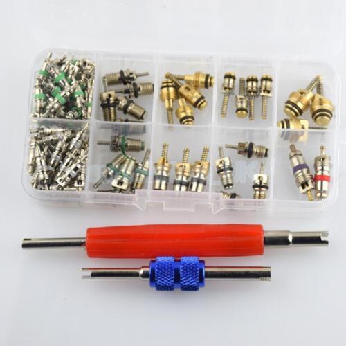 "100pcs HVAC R134a/R12 A/C Air Schrader Valve Core & Remover Tool Kit 1/4"" 5/16"""