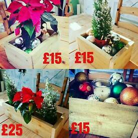 Rustic style Xmas boxes with real tree or Poinsettia