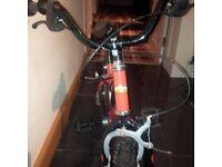 Power rangers red bike
