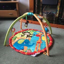 Playmat/activity gym