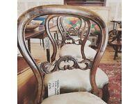 Victorian Balloon back parlour side chairs x 4