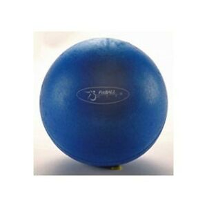 Ball Dynamics Brand New Fitball 9
